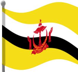 Brunei flag clipart.