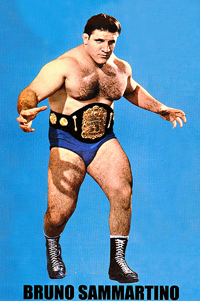 Championship Region, Fifth Round: (4) Bruno Sammartino vs.