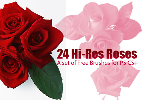 Flower Photoshop Brushes: 26 Realistic Spring Blooms Clip Art.
