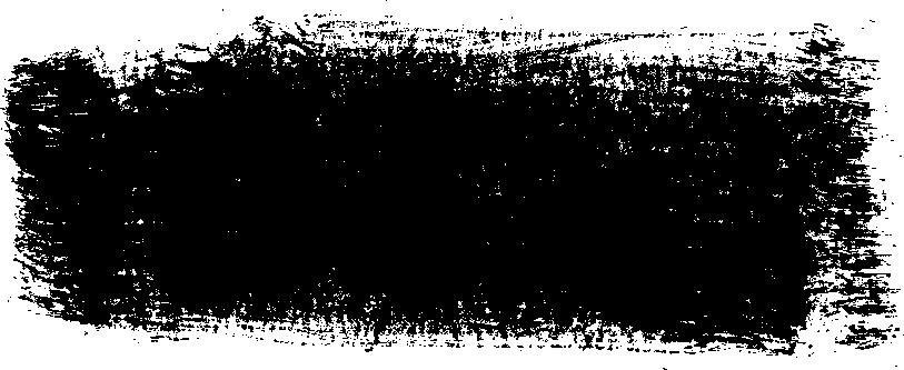 55 Dry Brush Stroke (PNG Transparent).