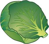 Clip Art Brussel Sprouts Clipart.