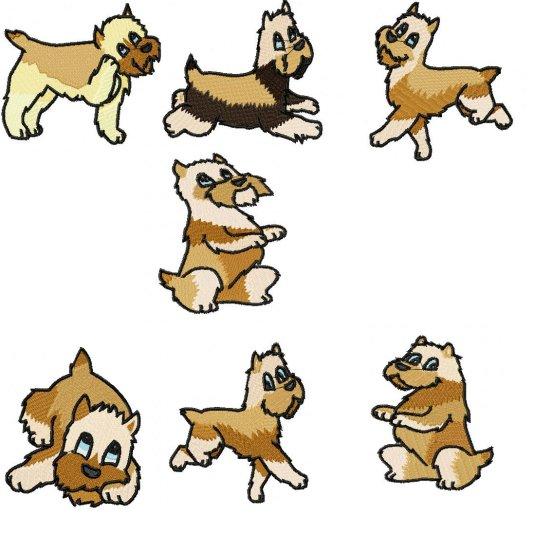 Griffon Dogs.