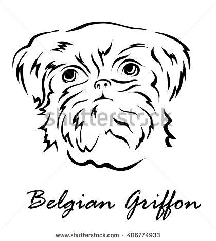 Belgian Griffon Stock Photos, Royalty.