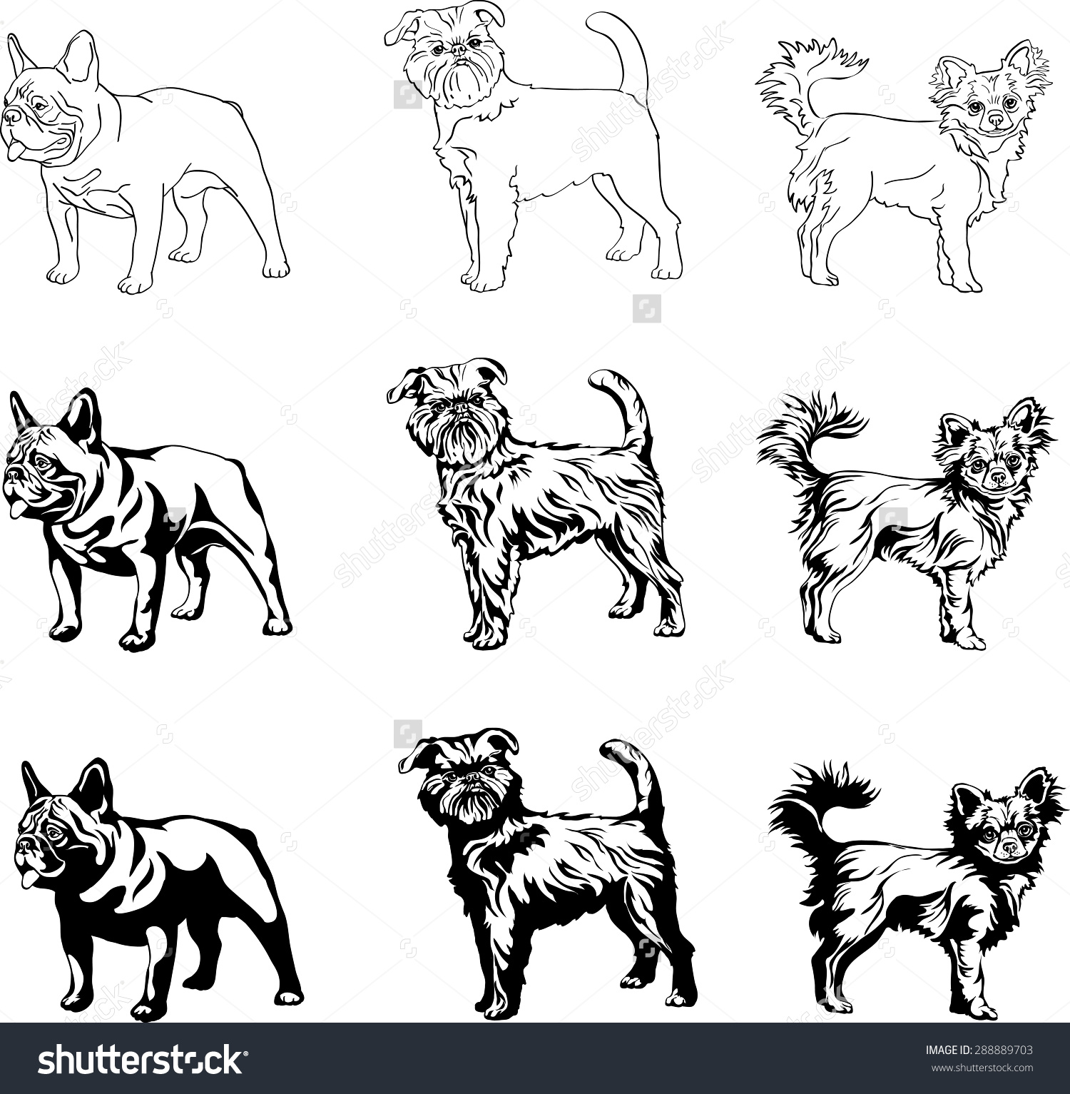 Dogs English Bulldog Brussels Griffon Chihuahua Stock Vector.