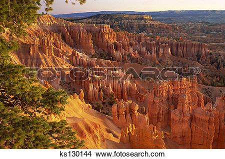 Stock Photo of 'Queen's Garden' hoodoos at sunrise. Bryce Canyon.