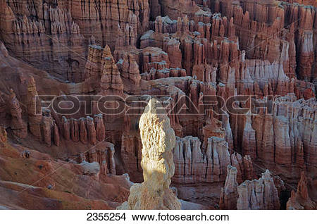 Stock Photo of Bryce Canyon National Park; Utah, United States Of.