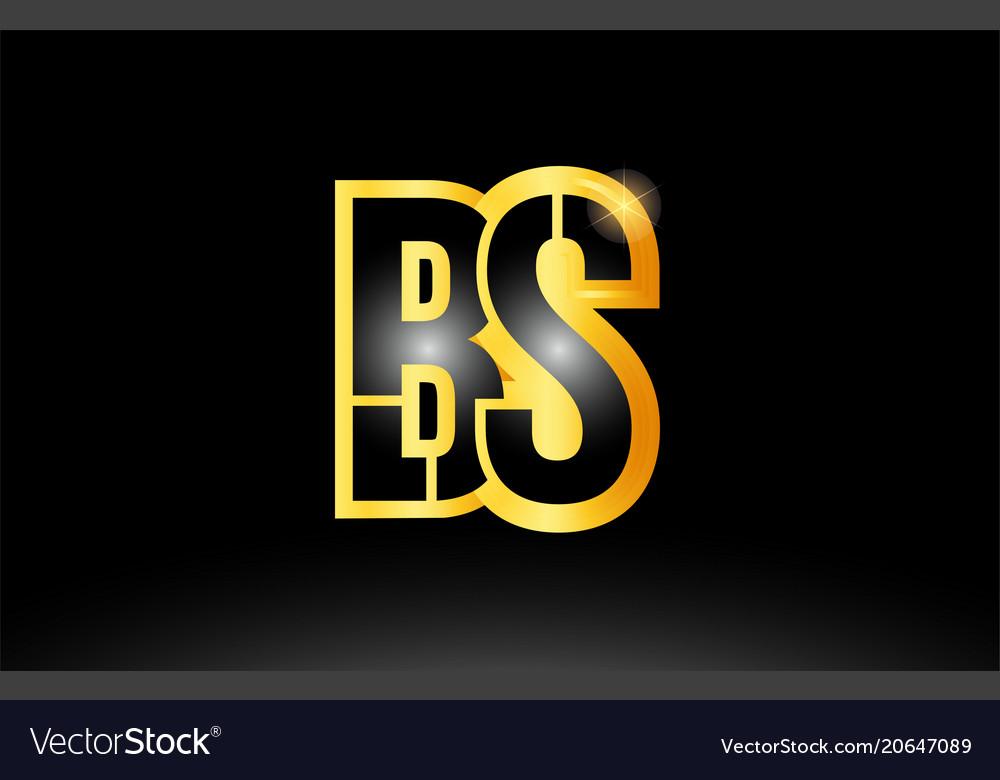 Gold black alphabet letter bs b s logo.