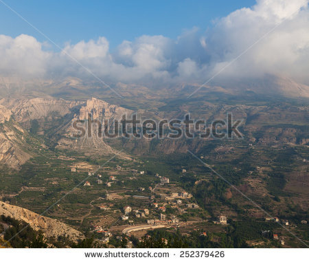 Cedar Of Lebanon Stock Photos, Royalty.