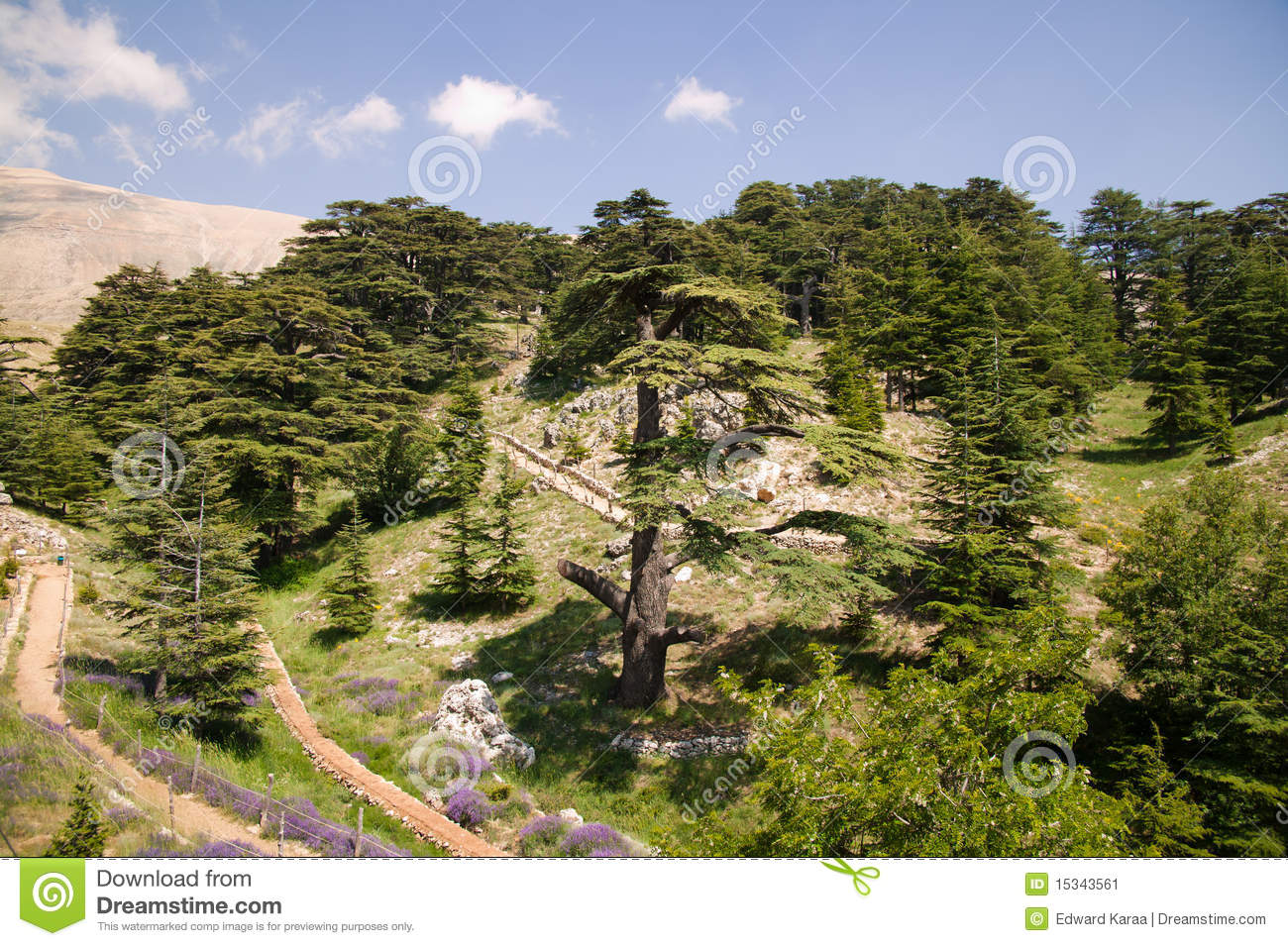 Bcharre. Lebanon Stock Photo.