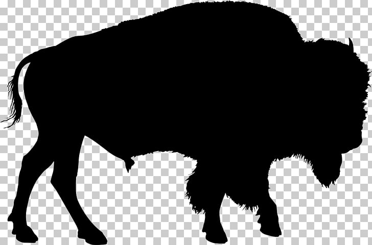 American bison Drawing , bison PNG clipart.
