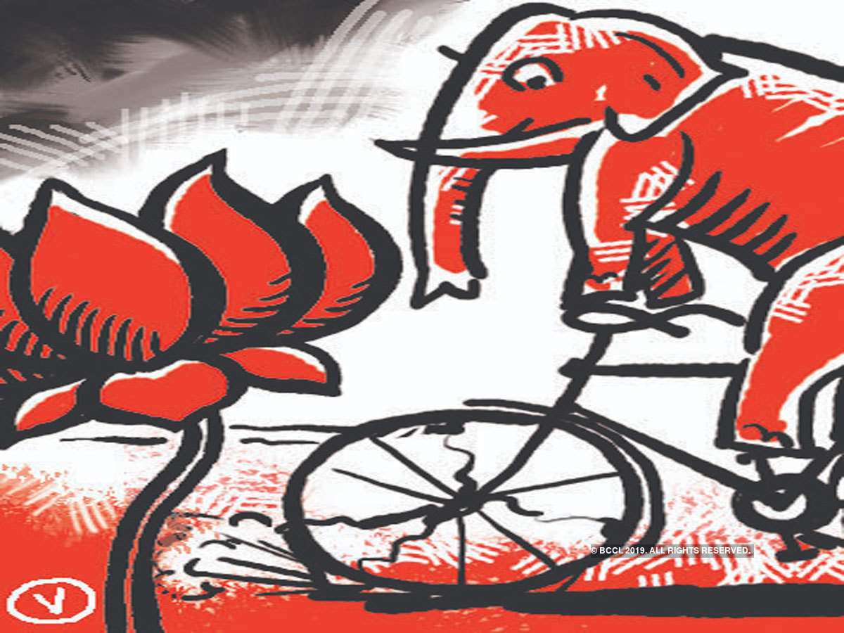 Battle rages between BJP, BSP over \'outsider\' tag in Amroha.