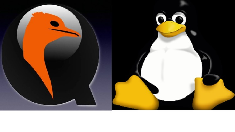 Embedded Linux.
