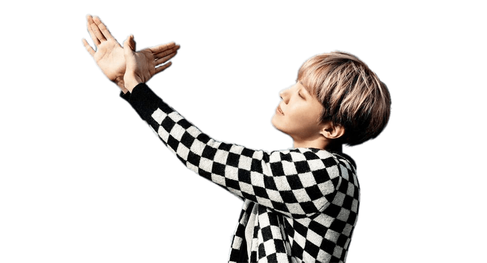 BTS J Hope Bird transparent PNG.