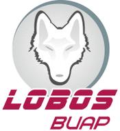 UNM Lobos Clip Art Download 24 clip arts (Page 1).