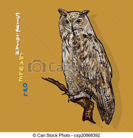 EPS Vectors of siberian eagle owl, or bubo bubo sibiricus.vector.
