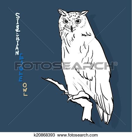 Clipart of siberian eagle owl, or bubo bubo sibiricus.vector.