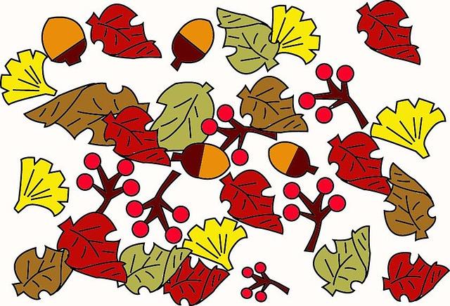 Free photo Genus Quercus Acorn Oak Fruit Fruit Oak.