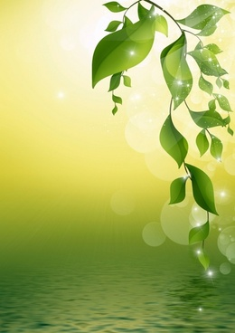 Hd background light green free stock photos download (20,106 Free.