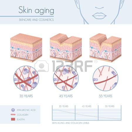 95,533 Skin Cliparts, Stock Vector And Royalty Free Skin Illustrations.