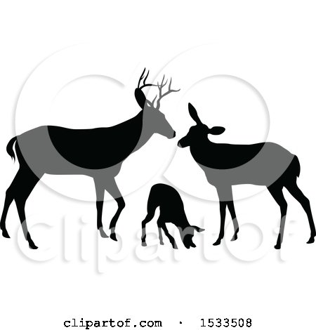 Buck And Doe Clipart (94+ images in Collection) Page 1.