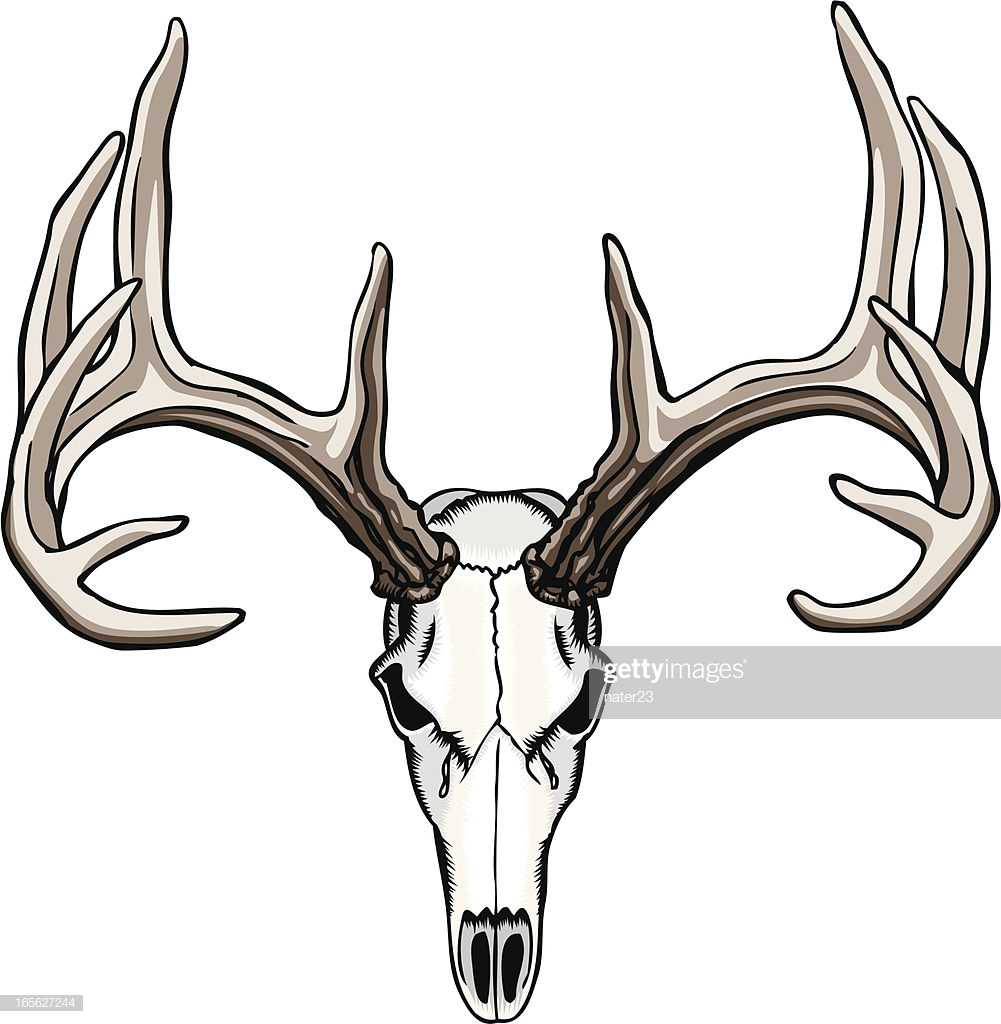 60 Top Deer Stock Illustrations, Clip art, Cartoons, & Icons.