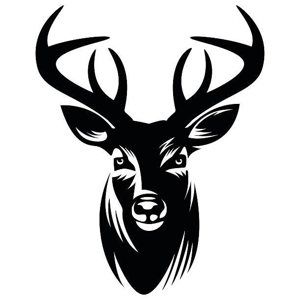 Best Buck Illustrations, Royalty.