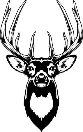 7,991 Buck Stock Vector Illustration And Royalty Free Buck Clipart.