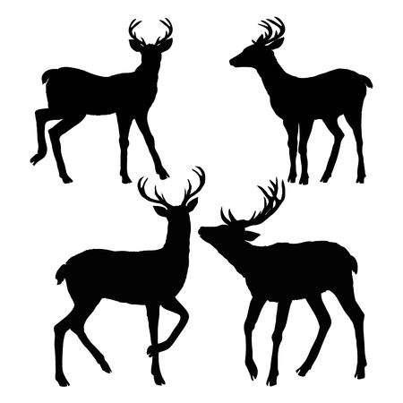 3,166 Deer Buck Stock Vector Illustration And Royalty Free Deer Buck.