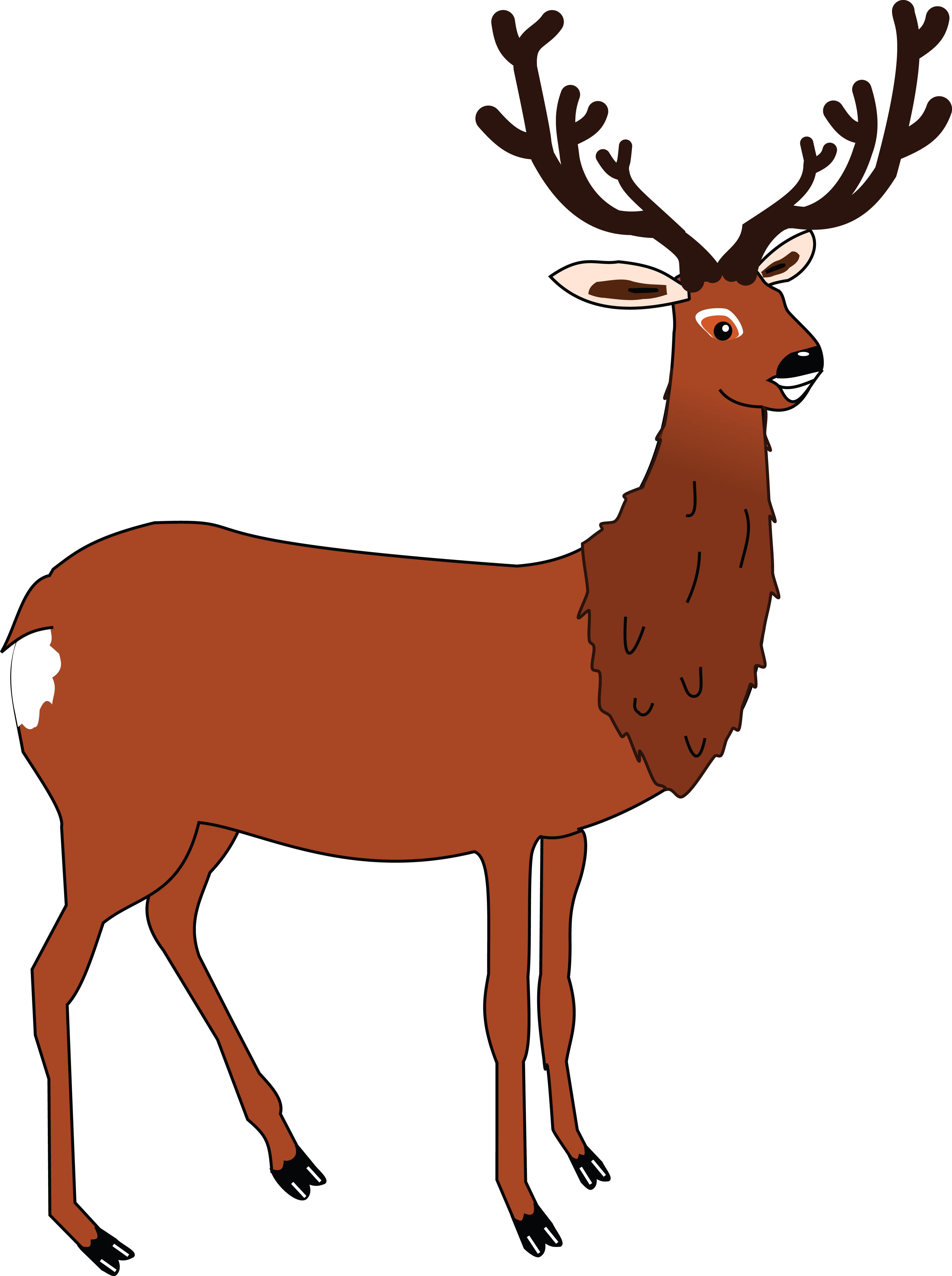 Free Clipart Of A buck deer.