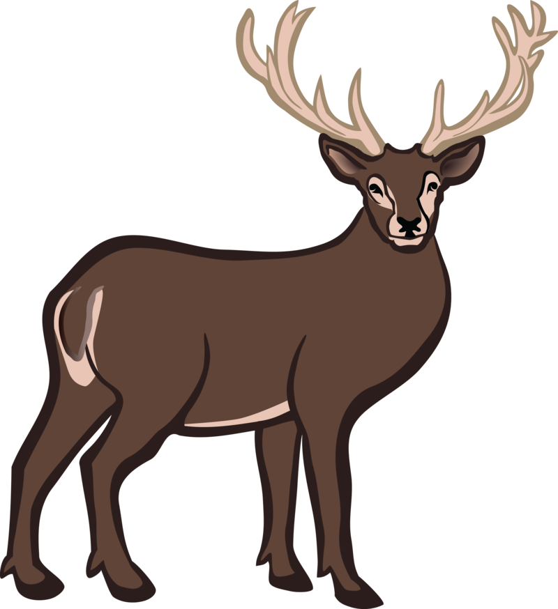 Download Free png Free Clipart Of A buck deer #.