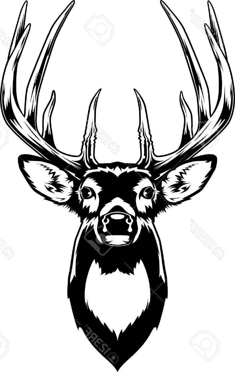 11676 Deer free clipart.