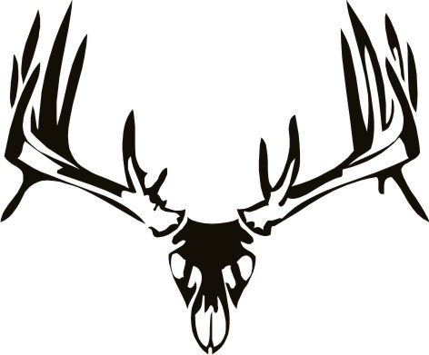 Showing post & media for Deer skull cartoon.
