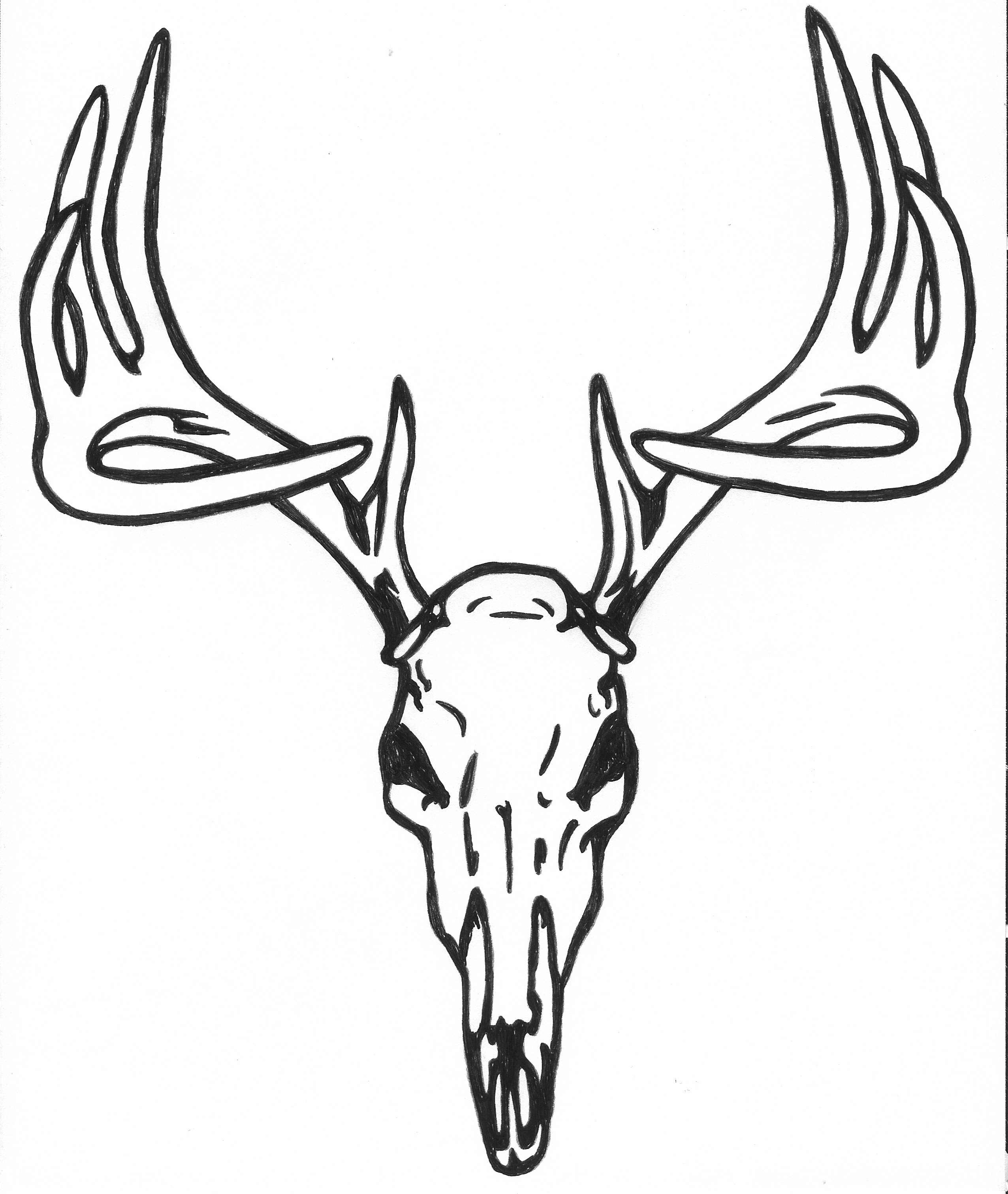 Deer Skull Clipart & Deer Skull Clip Art Images.