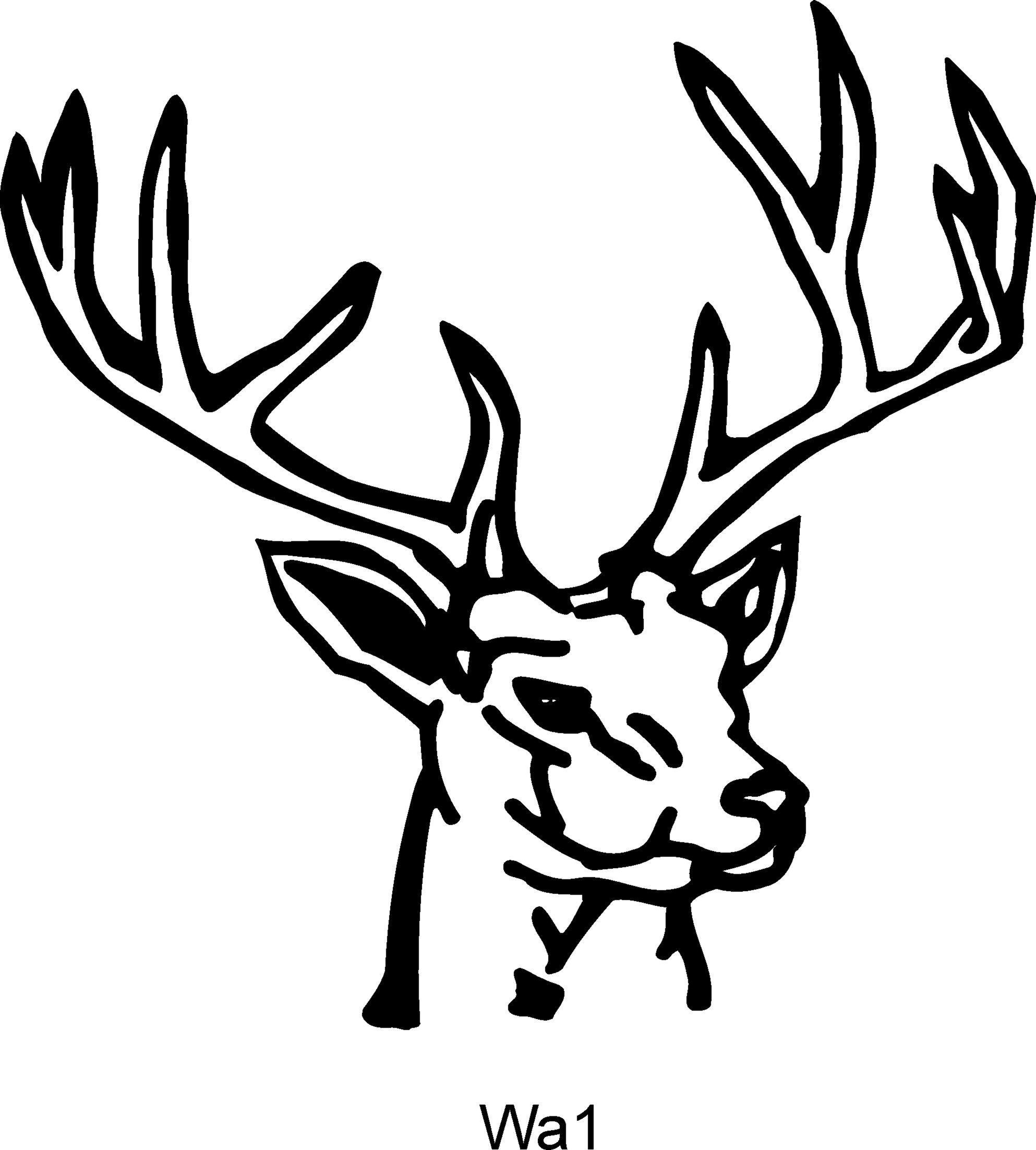 Buck head clipart 9 » Clipart Portal.