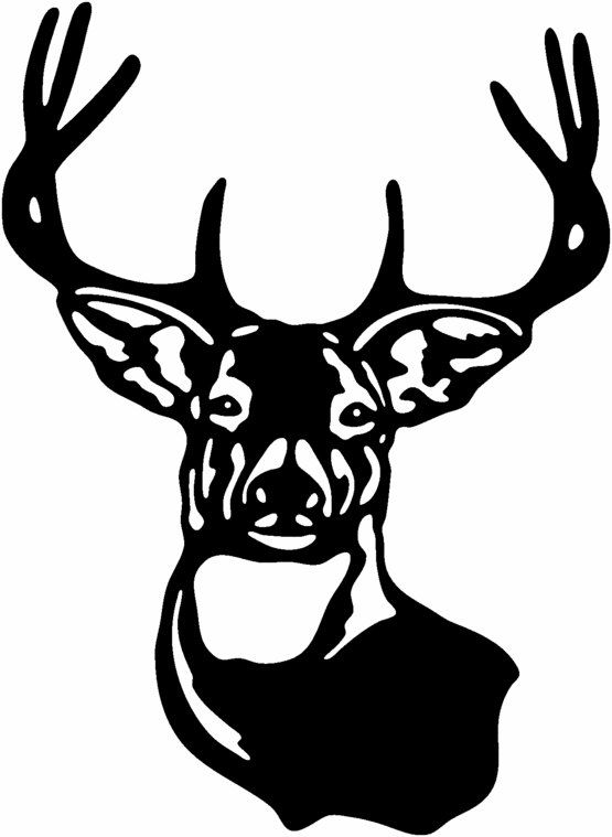 Deer Head Hunting Buck Gloss Vinyl Window Car wall Decal.