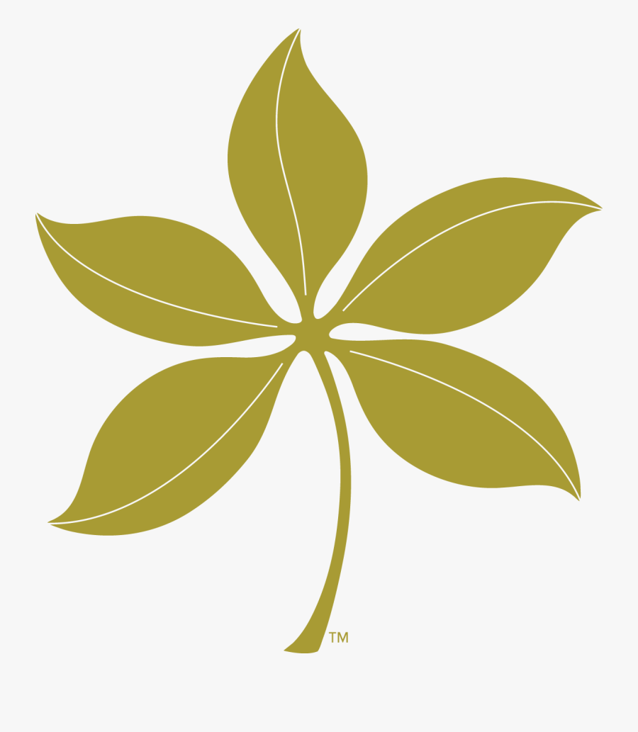 Ohio State Red Buckeye Leaf , Free Transparent Clipart.