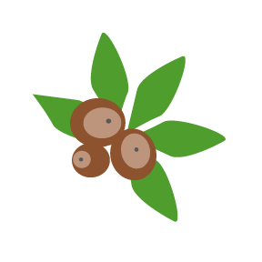 Free Buckeye Leaf Cliparts, Download Free Clip Art, Free.