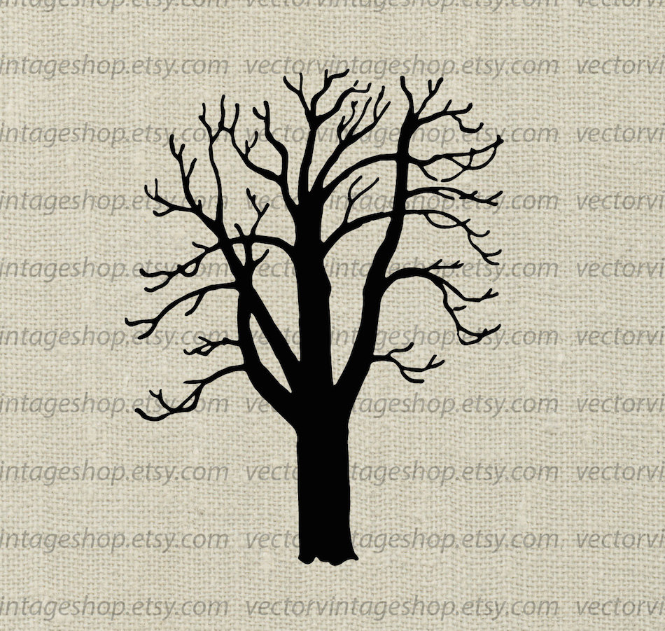 Tree Vector Clipart, Buckey Silhouette Clip Art, Commercial Use, Instant  Download Graphic, Botanical Art Illustration, Printable Art.