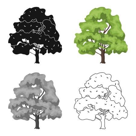 80 Buckeye Trees Stock Vector Illustration And Royalty Free Buckeye.
