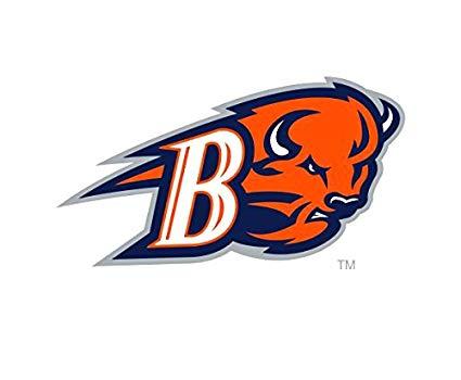 Amazon.com: Victory Tailgate Bucknell University Bison.