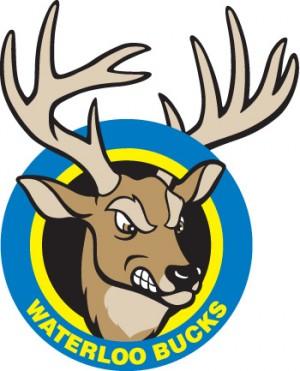 clip art Bucks logo.