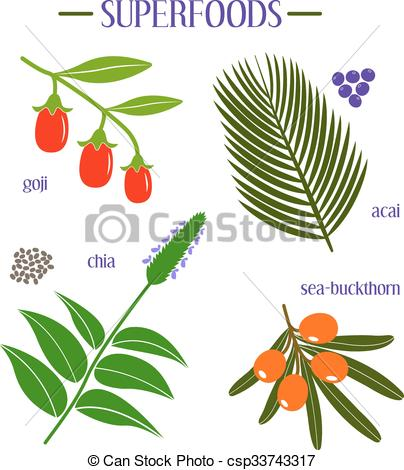 Vector Clip Art of Set of superfood. Goji, acai, chia, sea.