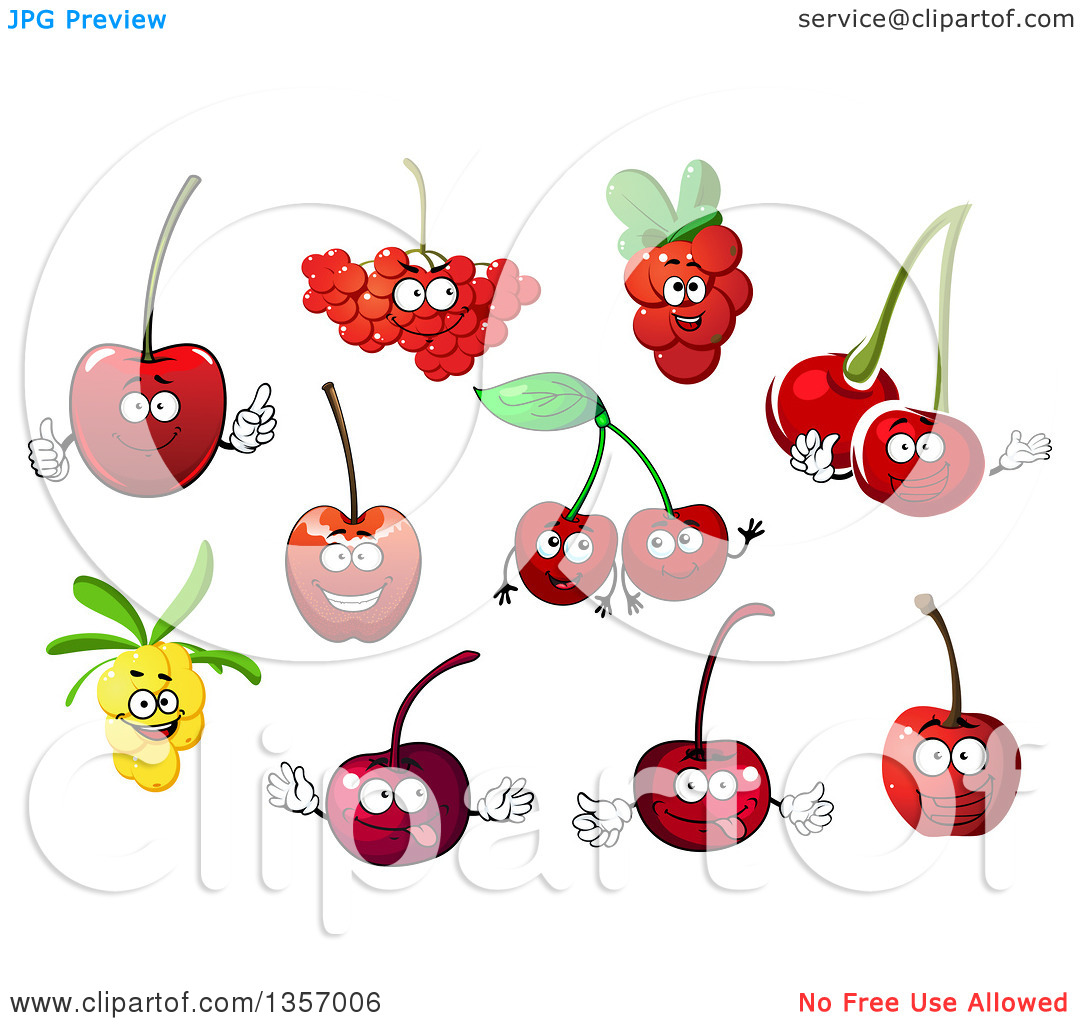 Clipart of Cherry, Rowanberry, Cowberry and Sea Buckthorn Fruit.