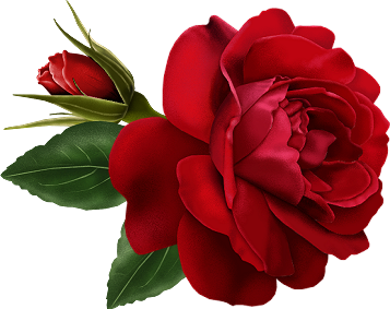 Red_Rose_with_Bud_Painted_Clipart.png?m=1365631200.