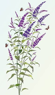 Butterfly Bush Clipart 20 Free Cliparts Download Images