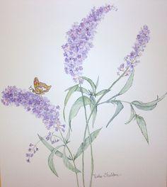 Buddleia Butterfly Bush Stencil.