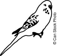 Budgie Vector Clip Art Illustrations. 58 Budgie clipart EPS vector.