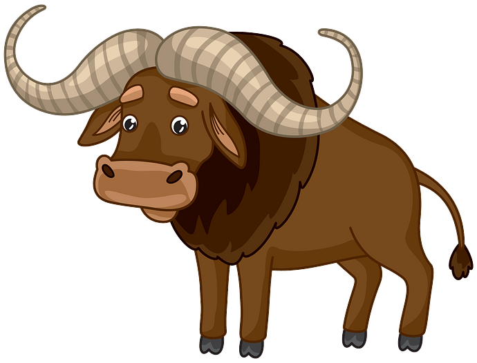 Buffalo clipart. Free download..