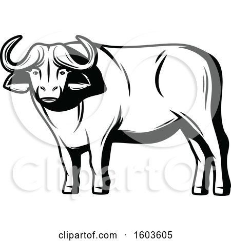 Clipart of a Water Buffalo in Black and White.