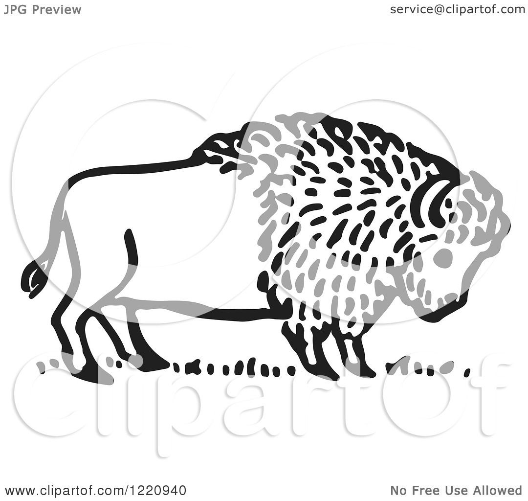 Clipart of a Black and White Buffalo.